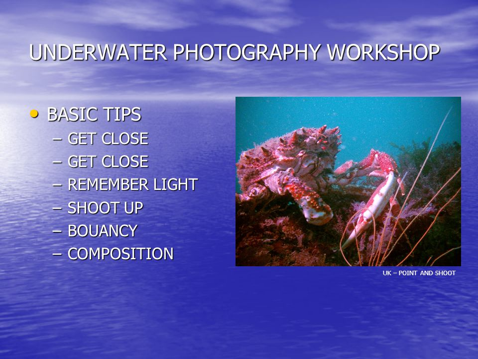 UNDERWATER PHOTOGRAPHY WORKSHOP BASIC TIPS BASIC TIPS –GET CLOSE –REMEMBER LIGHT –SHOOT UP –BOUANCY –COMPOSITION UK – POINT AND SHOOT