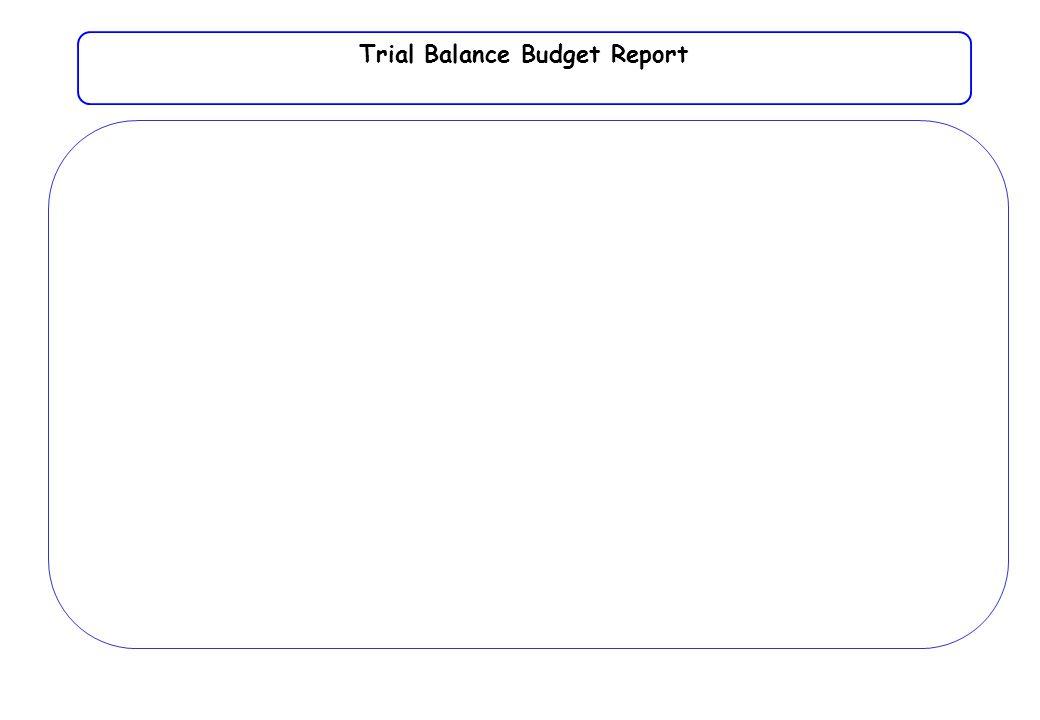 Trial Balance Budget Report