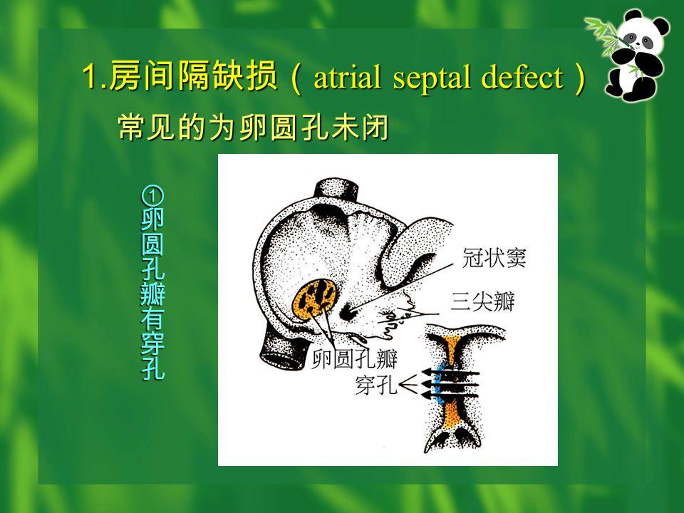 1. 房间隔缺损( atrial septal defect ) 常见的为卵圆孔未闭 常见的为卵圆孔未闭