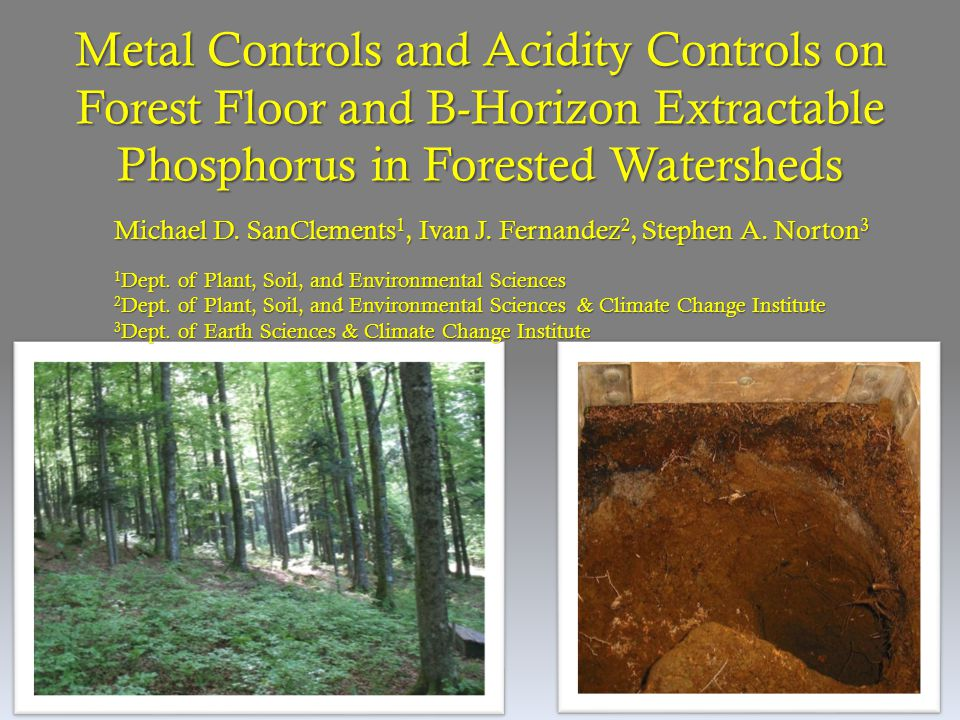 Metal Controls and Acidity Controls on Forest Floor and B-Horizon Extractable Phosphorus in Forested Watersheds Michael D. SanClements 1, Ivan J. Fern