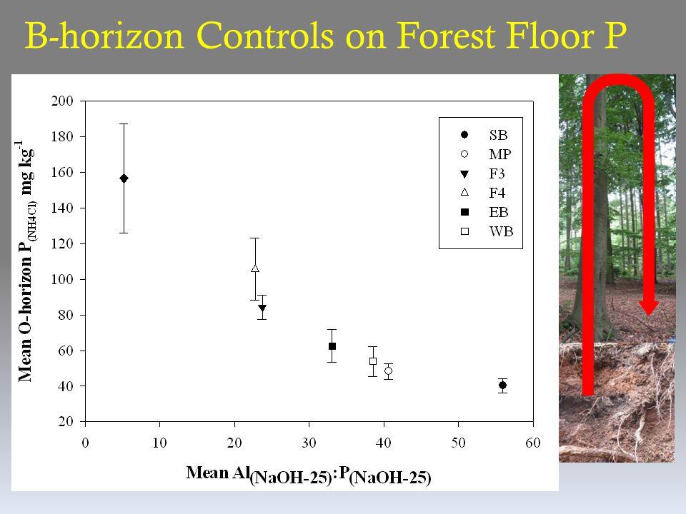 B-horizon Controls on Forest Floor P