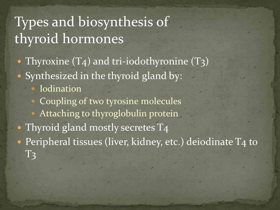 Deficiency of thyroid hormones Primary hypothyroidism: Failure of thyroid gland Secondary hypothyroidism: Failure of the pituitary to secrete TSH (rare) Failure of the hypothalamic-pituitary-thyroid axis Hypothyroidism