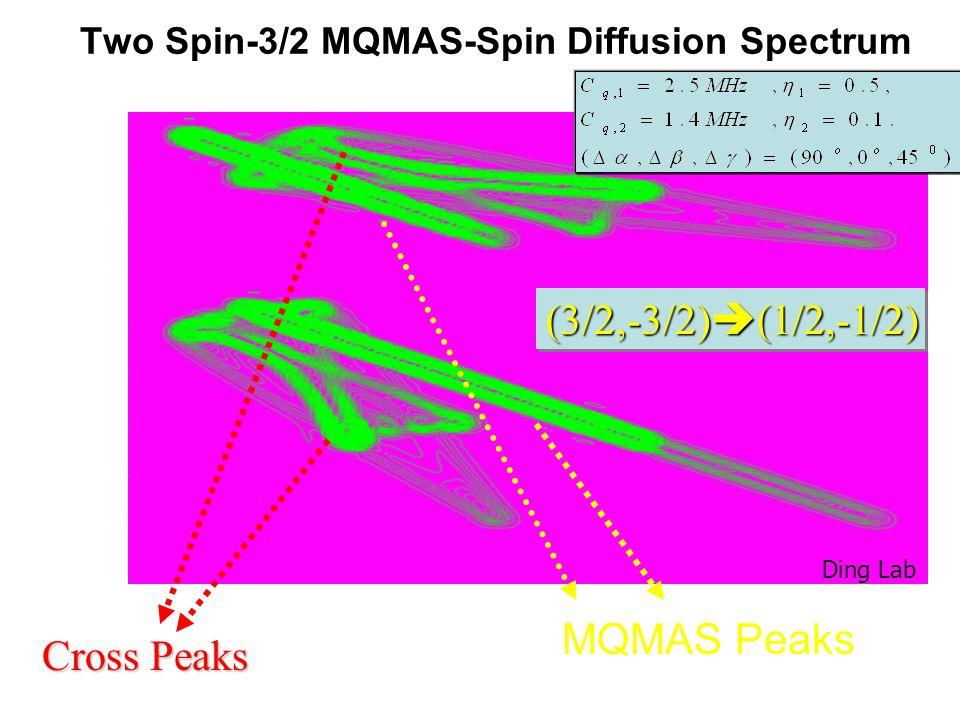 Two Spin-3/2 MQMAS-Spin Diffusion Spectrum MQMAS Peaks Cross Peaks (3/2,-3/2)  (1/2,-1/2) Ding Lab