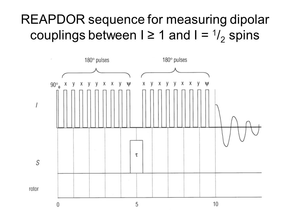 REAPDOR sequence for measuring dipolar couplings between I ≥ 1 and I = 1 / 2 spins