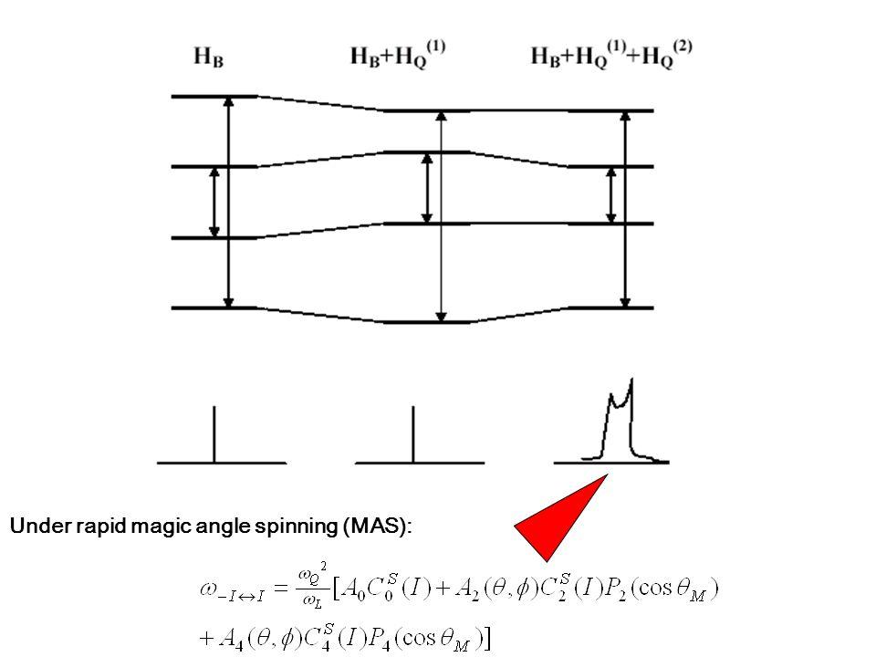 Under rapid magic angle spinning (MAS):