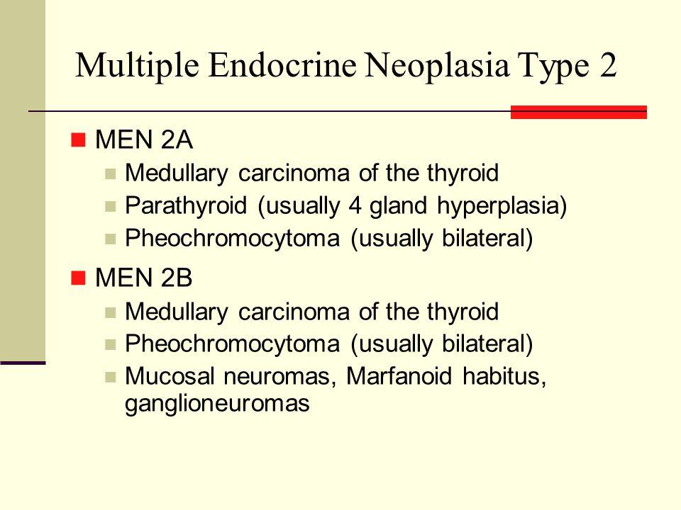 Multiple Endocrine Neoplasia Type 2 MEN 2A Medullary carcinoma of the thyroid Parathyroid (usually 4 gland hyperplasia) Pheochromocytoma (usually bilateral) MEN 2B Medullary carcinoma of the thyroid Pheochromocytoma (usually bilateral) Mucosal neuromas, Marfanoid habitus, ganglioneuromas