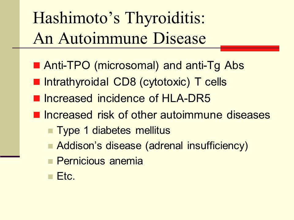 Hashimoto's Thyroiditis: An Autoimmune Disease Anti-TPO (microsomal) and anti-Tg Abs Intrathyroidal CD8 (cytotoxic) T cells Increased incidence of HLA-DR5 Increased risk of other autoimmune diseases Type 1 diabetes mellitus Addison's disease (adrenal insufficiency) Pernicious anemia Etc.