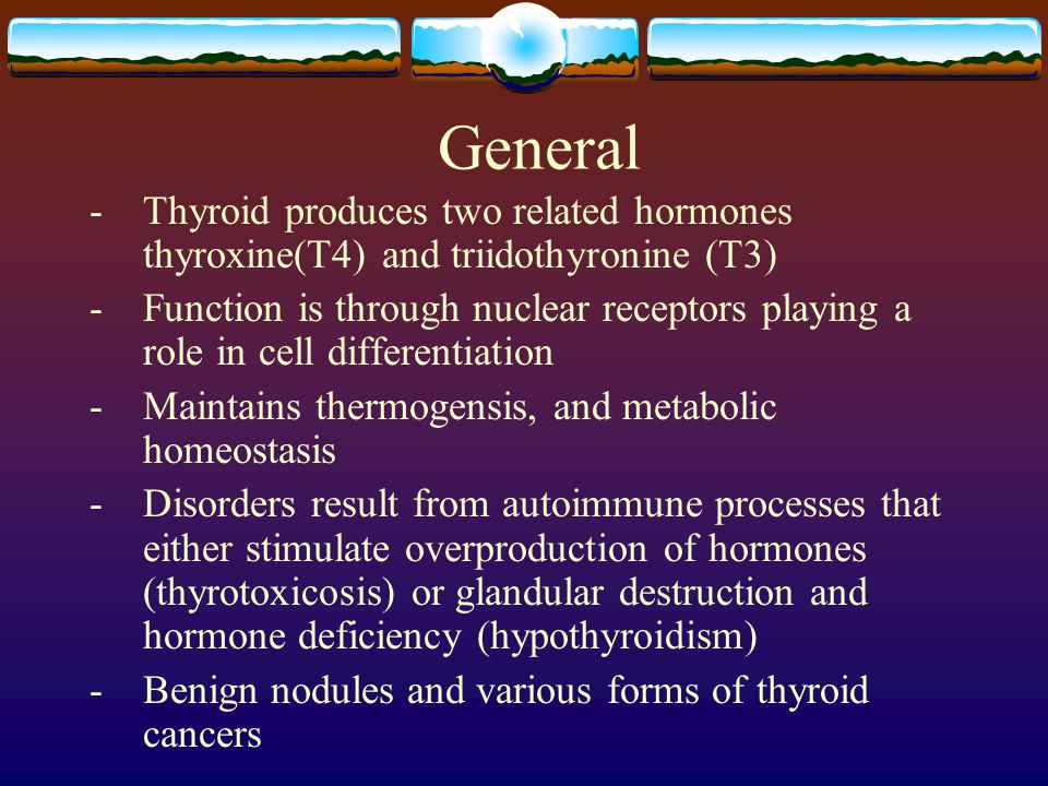 General -Thyroid produces two related hormones thyroxine(T4) and triidothyronine (T3) - Function is through nuclear receptors playing a role in cell d