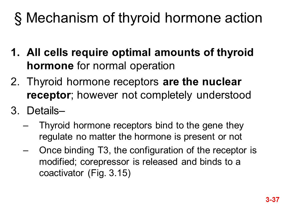 § Mechanism of thyroid hormone action 1.All cells require optimal amounts of thyroid hormone for normal operation 2.Thyroid hormone receptors are the nuclear receptor; however not completely understood 3.Details– –Thyroid hormone receptors bind to the gene they regulate no matter the hormone is present or not –Once binding T3, the configuration of the receptor is modified; corepressor is released and binds to a coactivator (Fig.
