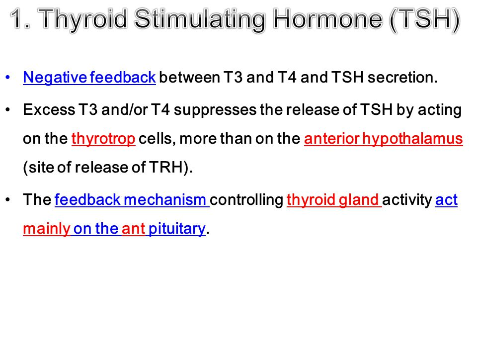 Negative feedback between T3 and T4 and TSH secretion.