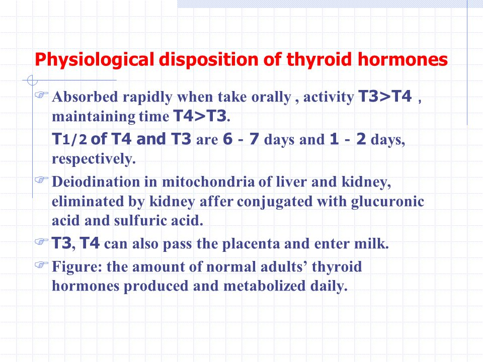 Physiological disposition of thyroid hormones  Absorbed rapidly when take orally, activity T3>T4 , maintaining time T4>T3.