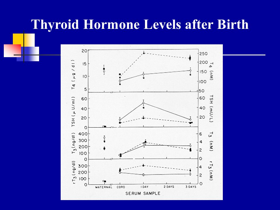 Thyroid Hormone Levels after Birth