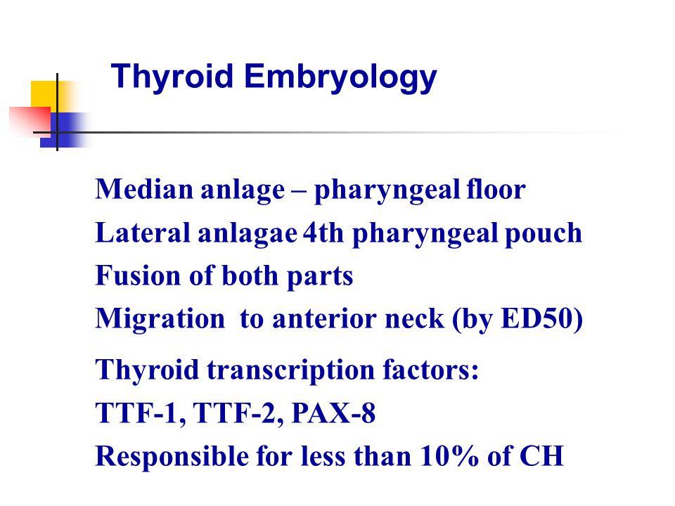 Congenital Hypothyroidism Etiology ectopic gland42-48% athyreosis29-35% dyshormonogenesis 22-25% all others < 0.1%