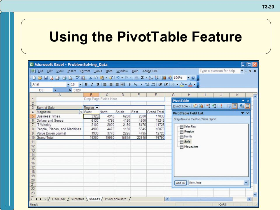 T3-20 Using the PivotTable Feature