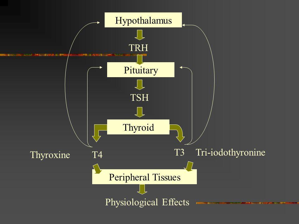 Hypothalamus TRH Pituitary TSH Thyroid T4 T3 Thyroxine Tri-iodothyronine Peripheral Tissues Physiological Effects