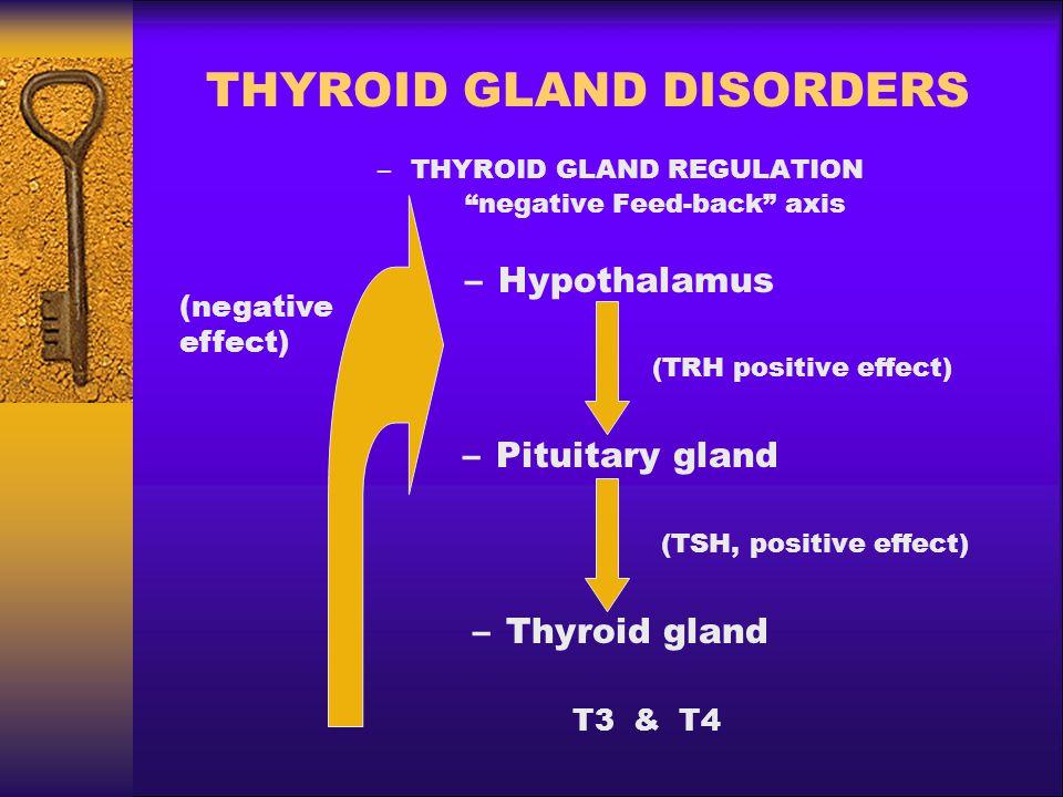 THYROID GLAND DISORDERS  THYROID HORMONE EFFECTS –CARDIOVASCULAR SYSTEM Hyperthyroidism, increases: –Heart rate & myocardial strenght –Cardiac output –Peripheral resistances (Vasodilatation) –Oxygen consumption –Arterial pressure Hypothyroidism, reduces: –Heart rate & myocardial strenght –Cardiac output –Peripheral resistances (Vasodilatation) –Oxygen consumption –Arterial pressure