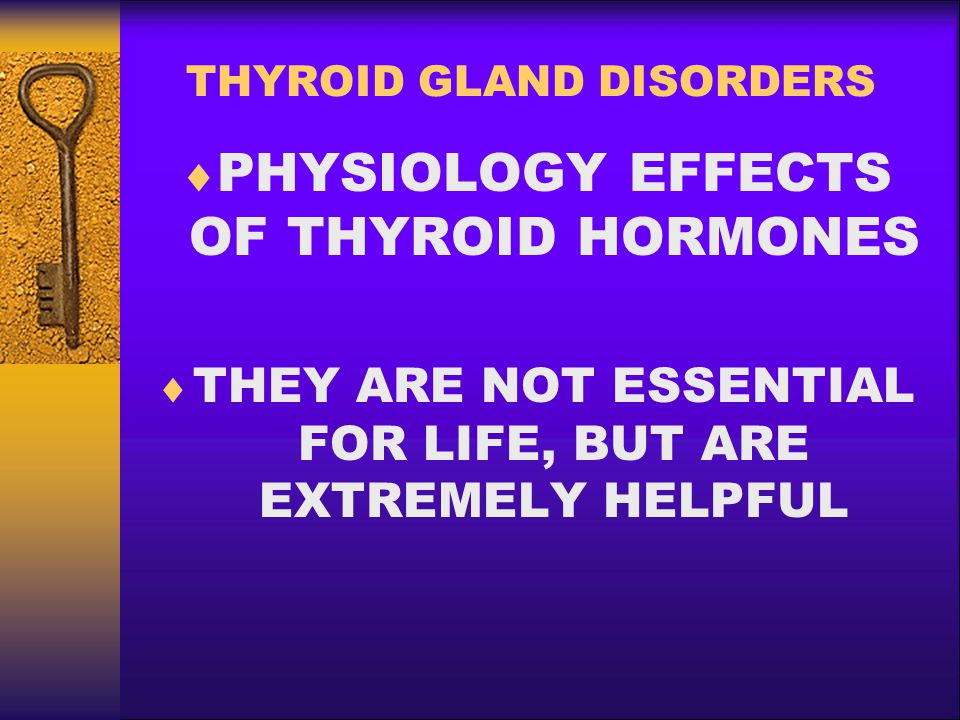THYROID GLAND DISORDERS  THYROID HORMONE EFFECTS: –Affects every single cell in the body Modulates: –Oxygen consumption –Growth rate –Maturation and cell differentiation –Turnover of Vitamins, Hormones, Proteins, Fat, CHO