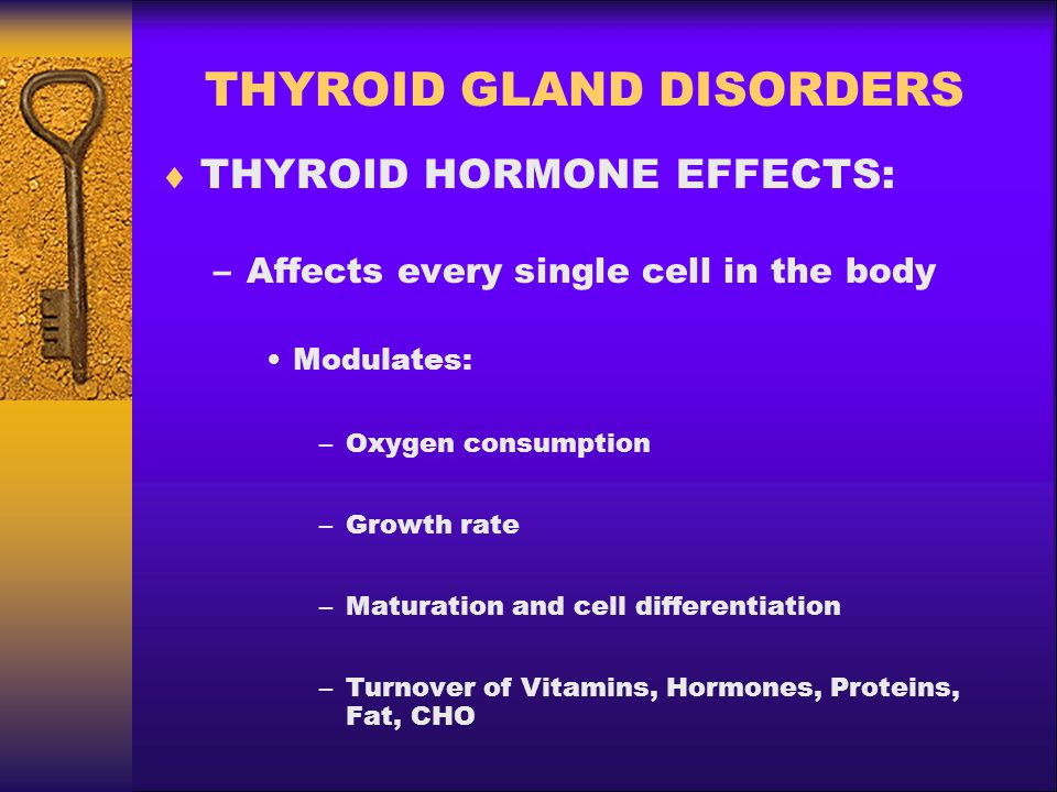 THYROID GLAND DISORDERS  THYROID HORMONE EFFECTS: –Affects every single cell in the body Modulates: –Oxygen consumption –Growth rate –Maturation and