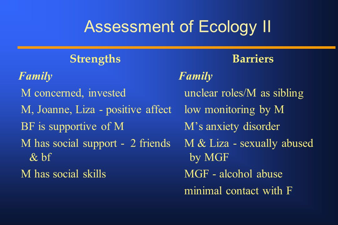Assessment of Ecology II Strengths Family M concerned, invested M, Joanne, Liza - positive affect BF is supportive of M M has social support - 2 frien