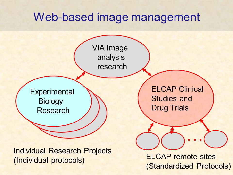 Web-based image management VIA Image analysis research ELCAP Clinical Studies and Drug Trials Experimental Biology Research … Individual Research Projects (Individual protocols) ELCAP remote sites (Standardized Protocols)