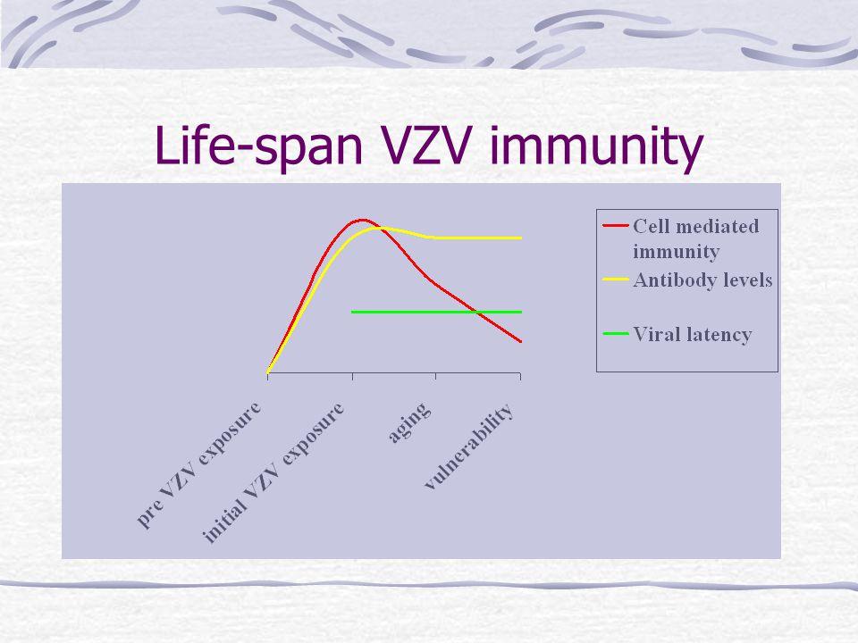 Life-span VZV immunity