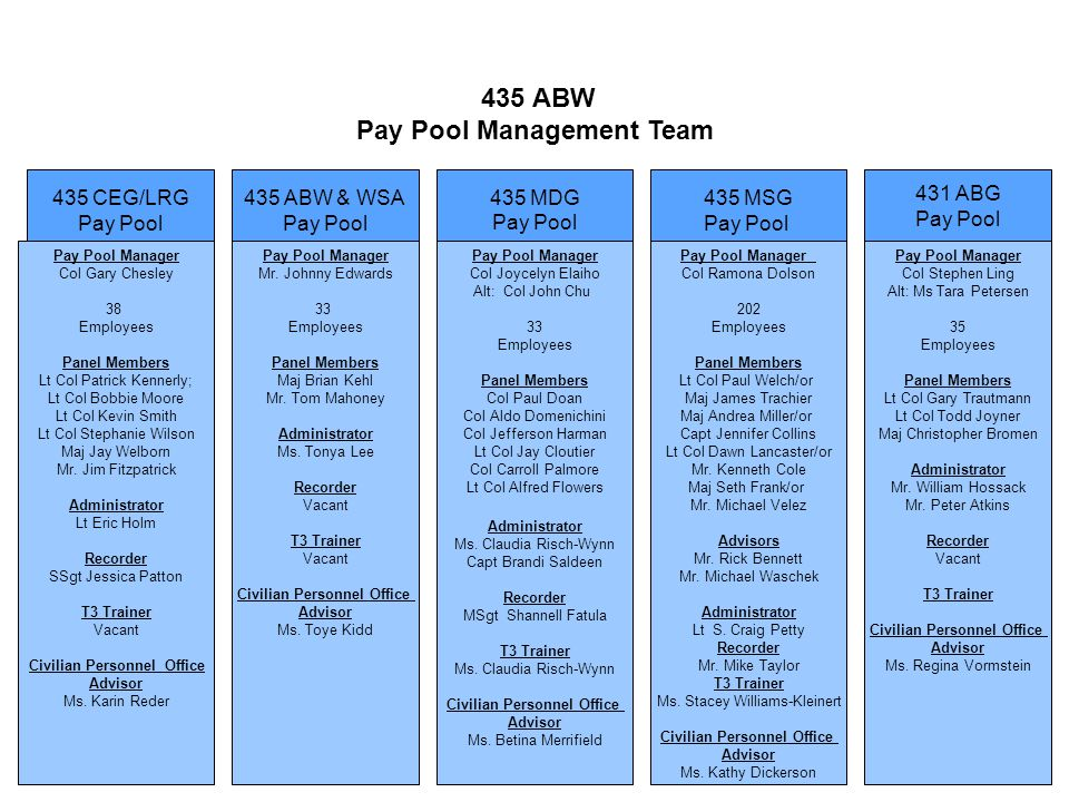 435 ABW & WSA Pay Pool 435 MSG Pay Pool 435 CEG/LRG Pay Pool 435 MDG Pay Pool Pay Pool Manager Col Ramona Dolson 202 Employees Panel Members Lt Col Pa