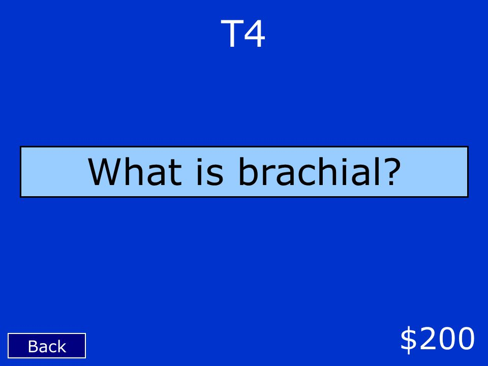 Back $200 T4 What is brachial?