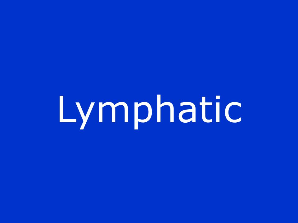 Lymphatic