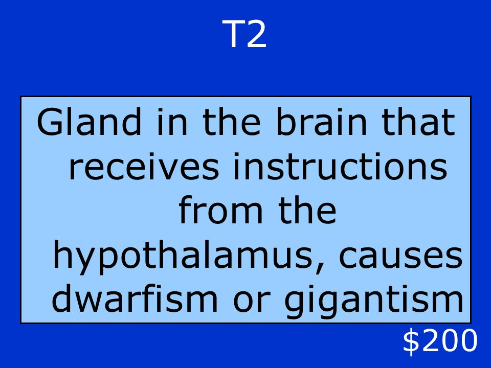 T2 $200 Gland in the brain that receives instructions from the hypothalamus, causes dwarfism or gigantism