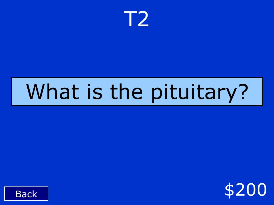 T2 Back $200 What is the pituitary?