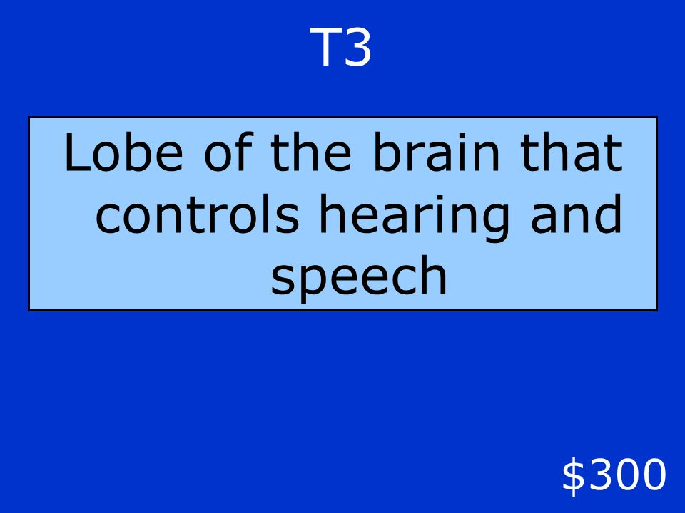 T3 $300 Lobe of the brain that controls hearing and speech