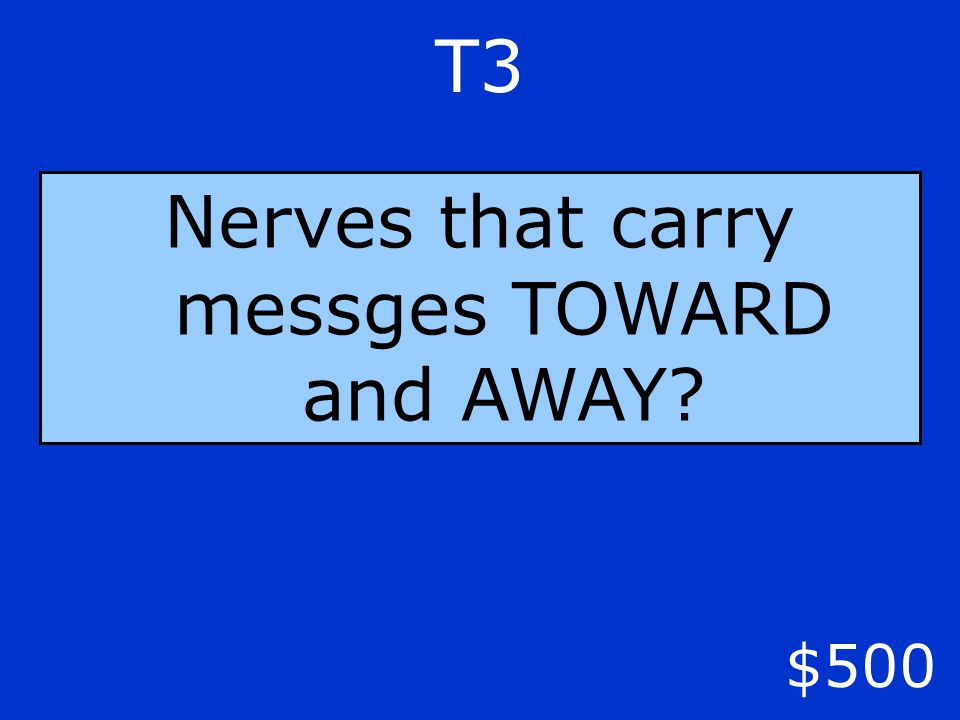 T3 $500 Nerves that carry messges TOWARD and AWAY?