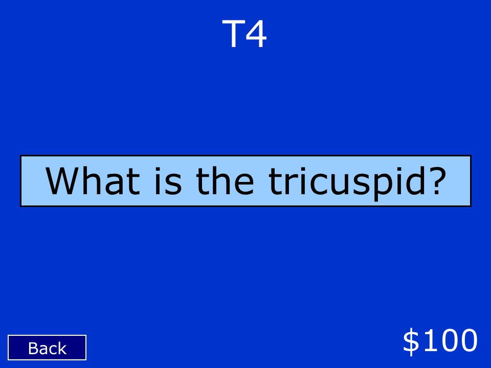 T4 Back $100 What is the tricuspid?