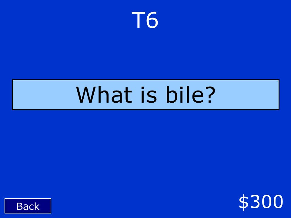 T6 Back $300 What is bile?