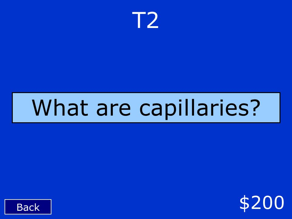 Back $200 T2 What are capillaries?