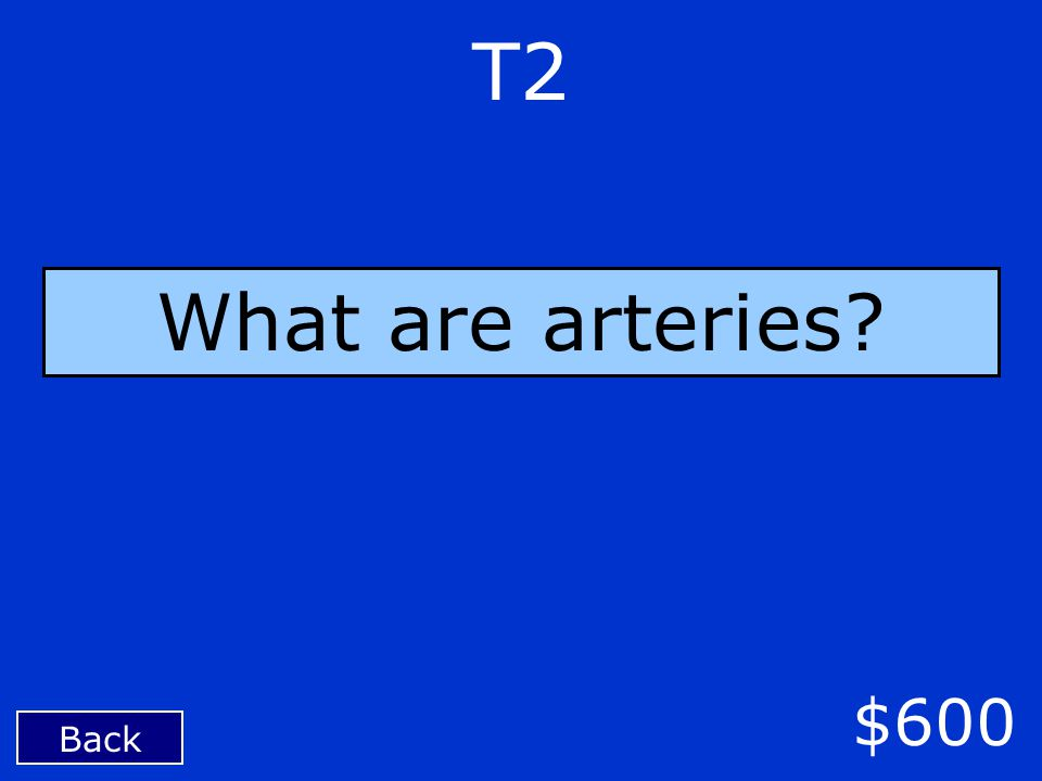 Back $600 T2 What are arteries?