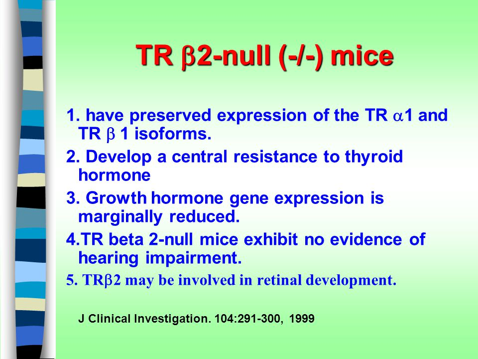 TR  2-null (-/-) mice 1. have preserved expression of the TR  1 and TR  1 isoforms. 2. Develop a central resistance to thyroid hormone 3. Growth ho