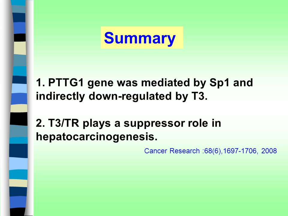 Summary 1. PTTG1 gene was mediated by Sp1 and indirectly down-regulated by T3. 2. T3/TR plays a suppressor role in hepatocarcinogenesis. Cancer Resear