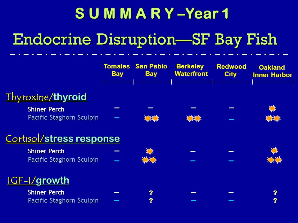 Thyroxine/ thyroid IGF-I/ growth San Pablo Bay Berkeley Waterfront Redwood City Oakland Inner Harbor Tomales Bay Shiner Perch Pacific Staghorn Sculpin Shiner Perch Pacific Staghorn Sculpin .