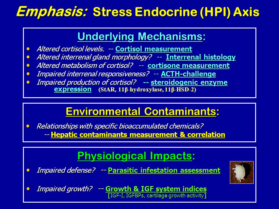Emphasis: Stress Endocrine (HPI) Axis Altered cortisol levels.