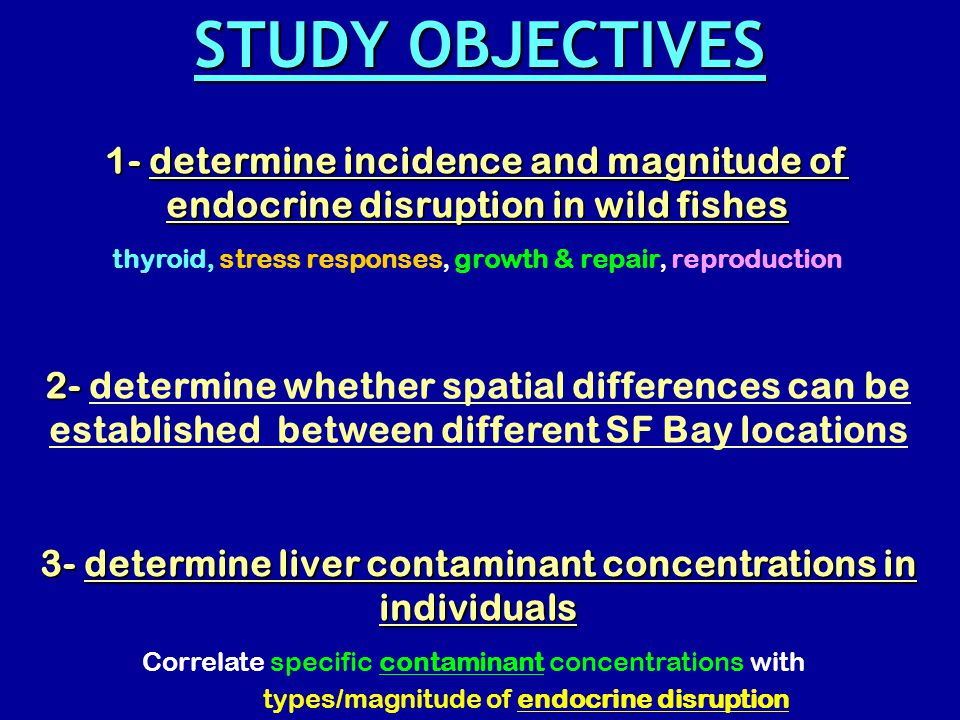 1- determine incidence and magnitude of endocrine disruption in wild fishes thyroid, stress responses, growth & repair, reproduction 2- 2- determine whether spatial differences can be established between different SF Bay locations 3- determine liver contaminant concentrations in individuals Correlate specific contaminant concentrations with types/magnitude of endocrine disruption STUDY OBJECTIVES