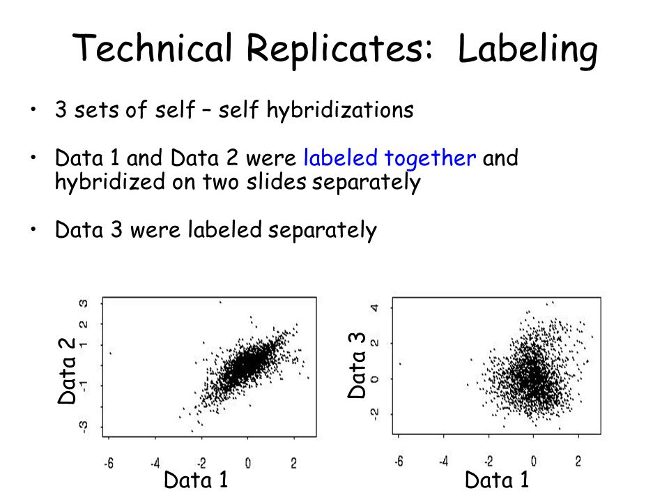 Technical Replicates: Labeling 3 sets of self – self hybridizations Data 1 and Data 2 were labeled together and hybridized on two slides separately Data 3 were labeled separately Data 1 Data 2 Data 3