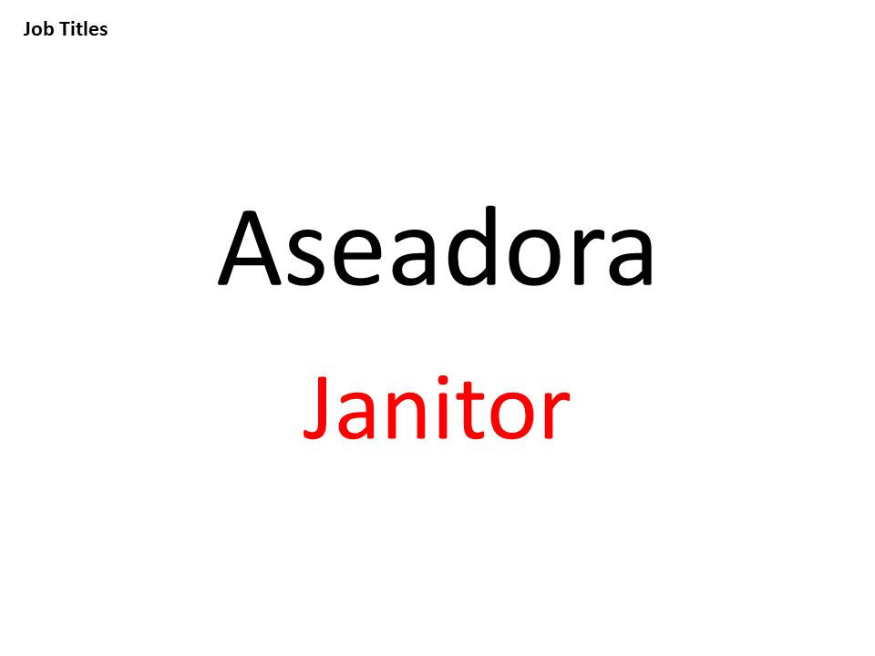 Job Titles Aseadora Janitor
