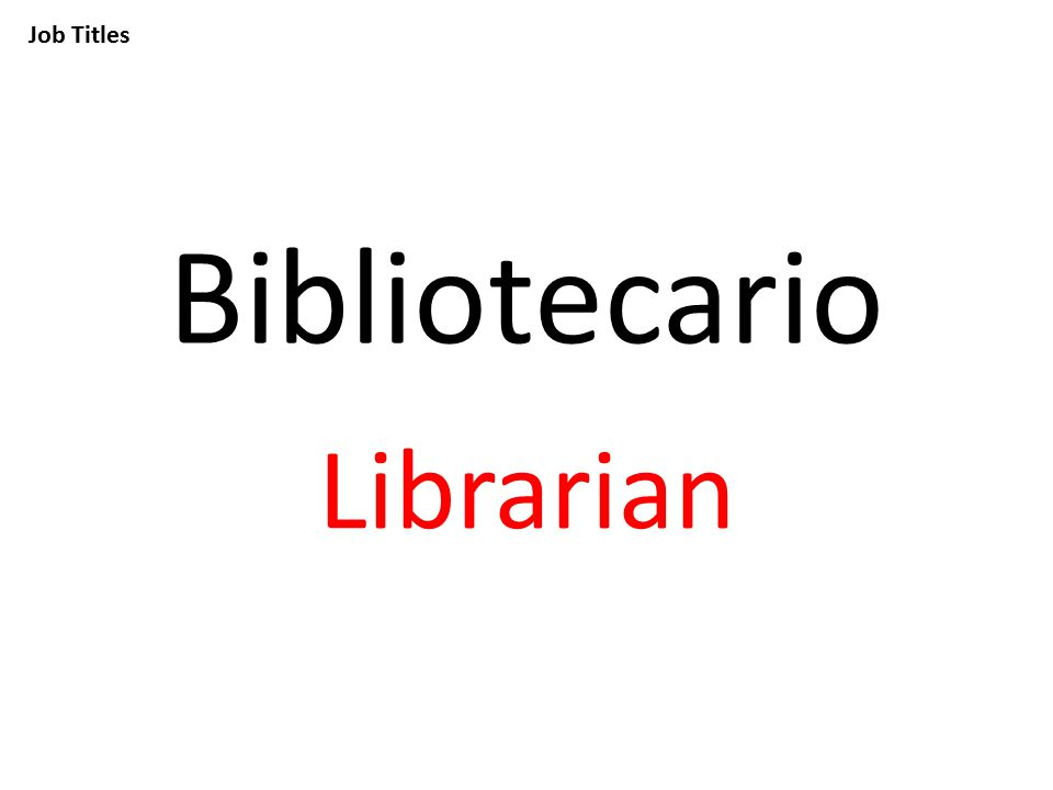 Job Titles Bibliotecario Librarian