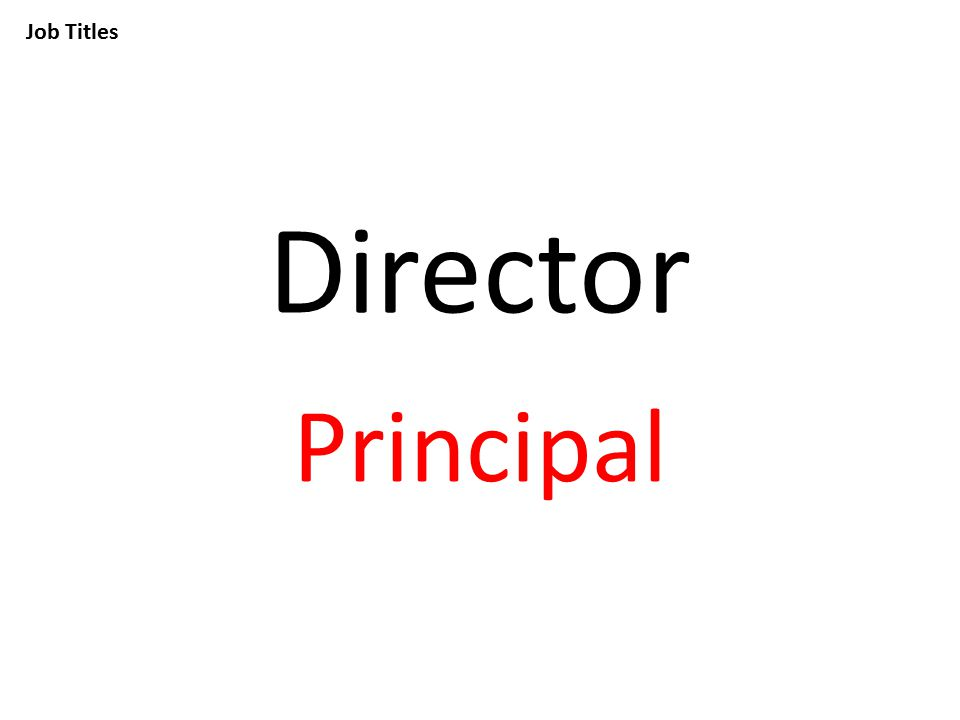 Job Titles Director Principal