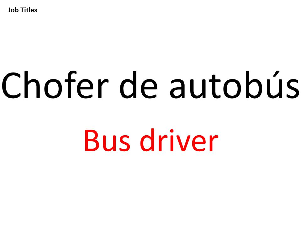 Job Titles Chofer de autobús Bus driver