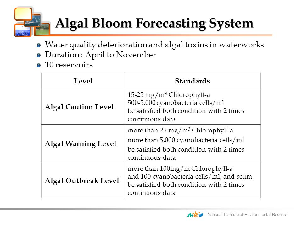 National Institute of Environmental Research Algal Bloom Forecasting System Algal Bloom Forecasting System LevelStandards Algal Caution Level 15-25 mg/m 3 Chlorophyll-a 500-5,000 cyanobacteria cells/ml be satisfied both condition with 2 times continuous data Algal Warning Level more than 25 mg/m 3 Chlorophyll-a more than 5,000 cyanobacteria cells/ml be satisfied both condition with 2 times continuous data Algal Outbreak Level more than 100mg/m Chlorophyll-a and 100 cyanobacteria cells/ml, and scum be satisfied both condition with 2 times continuous data Water quality deterioration and algal toxins in waterworks Duration : April to November 10 reservoirs