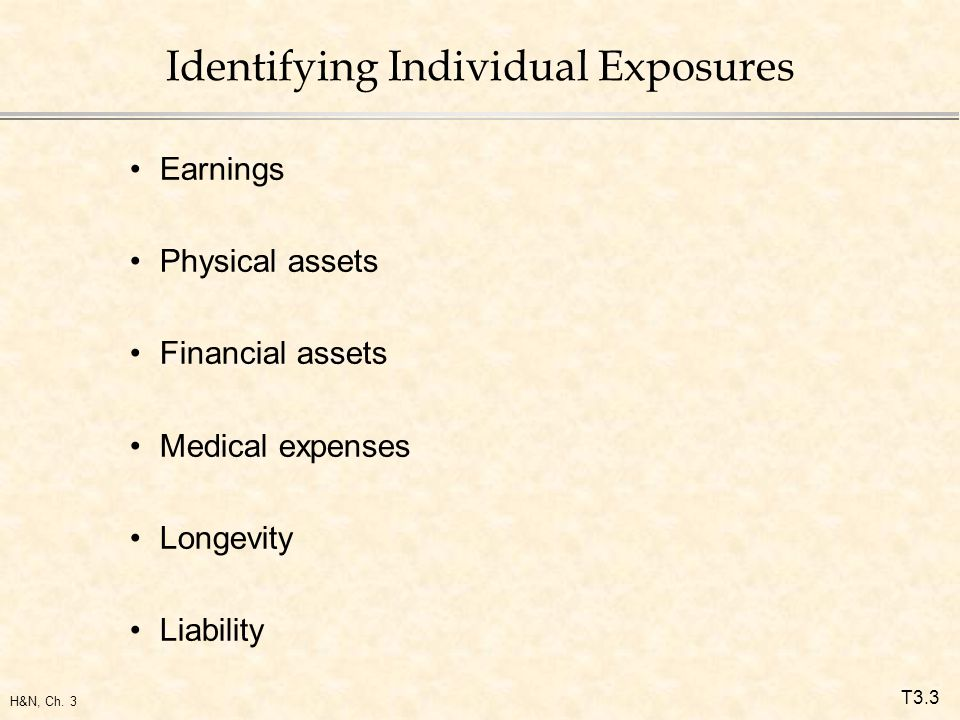 T3.3 H&N, Ch. 3 Identifying Individual Exposures Earnings Physical assets Financial assets Medical expenses Longevity Liability
