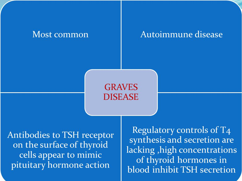  Most common  Autoimmune disease  Antibodies to TSH receptor on the surface of thyroid cells appear to mimic pituitaary hormone action  Regulatory controls of T4 synthesis and secretion are lacking of thyroid hormones in blood inhibit TSH secretion Most commonAutoimmune disease Antibodies to TSH receptor on the surface of thyroid cells appear to mimic pituitary hormone action Regulatory controls of T4 synthesis and secretion are lacking,high concentrations of thyroid hormones in blood inhibit TSH secretion GRAVES DISEASE