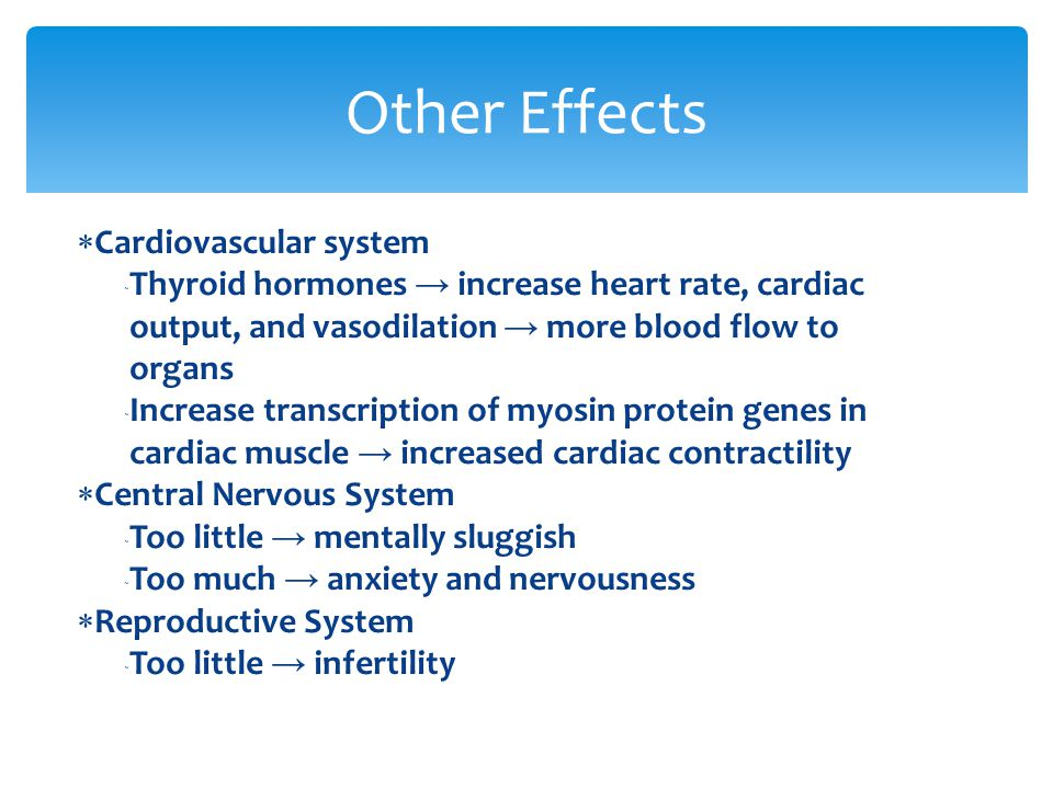  Cardiovascular system  Thyroid hormones → increase heart rate, cardiac output, and vasodilation → more blood flow to organs  Increase transcriptio